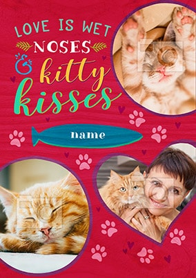 Love Is Wet Noses & Kitty Kisses Photo Card