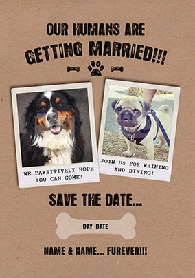 Our Humans Are Getting Married! Save The Date Card